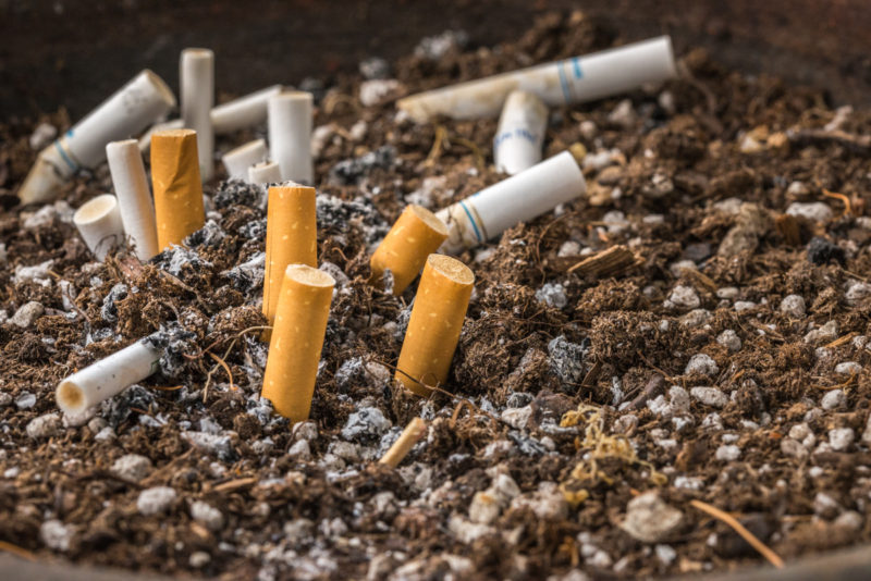 picture of cigarette butts