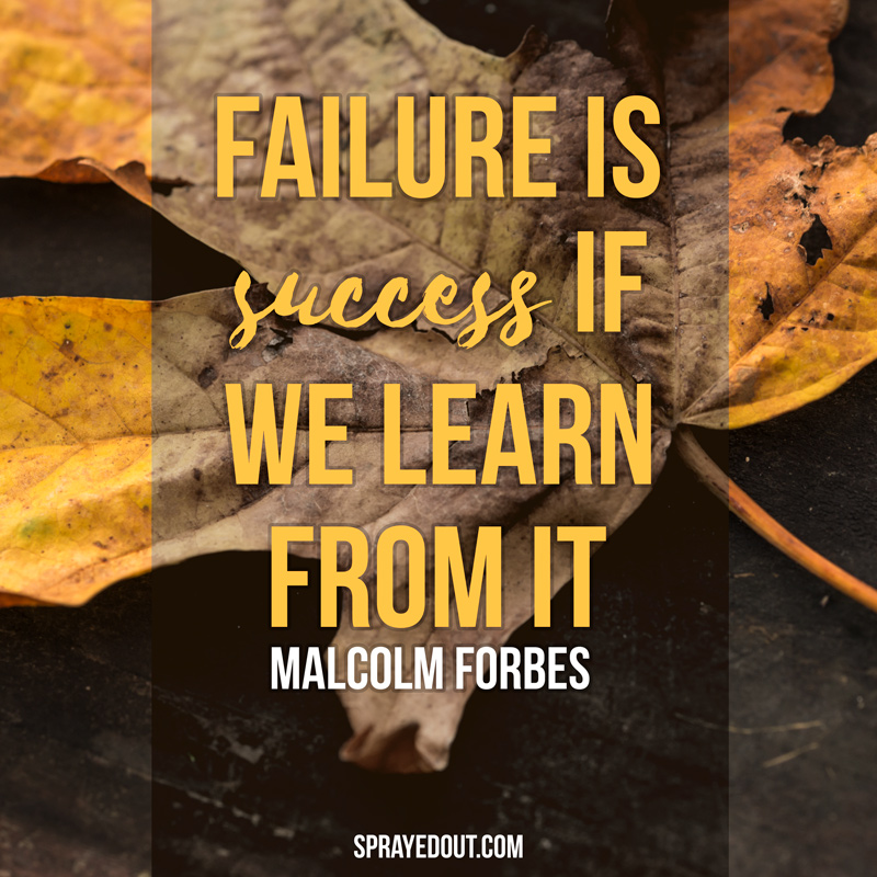 Failure is Success if We Learn From It : Malcolm Forbes Quote