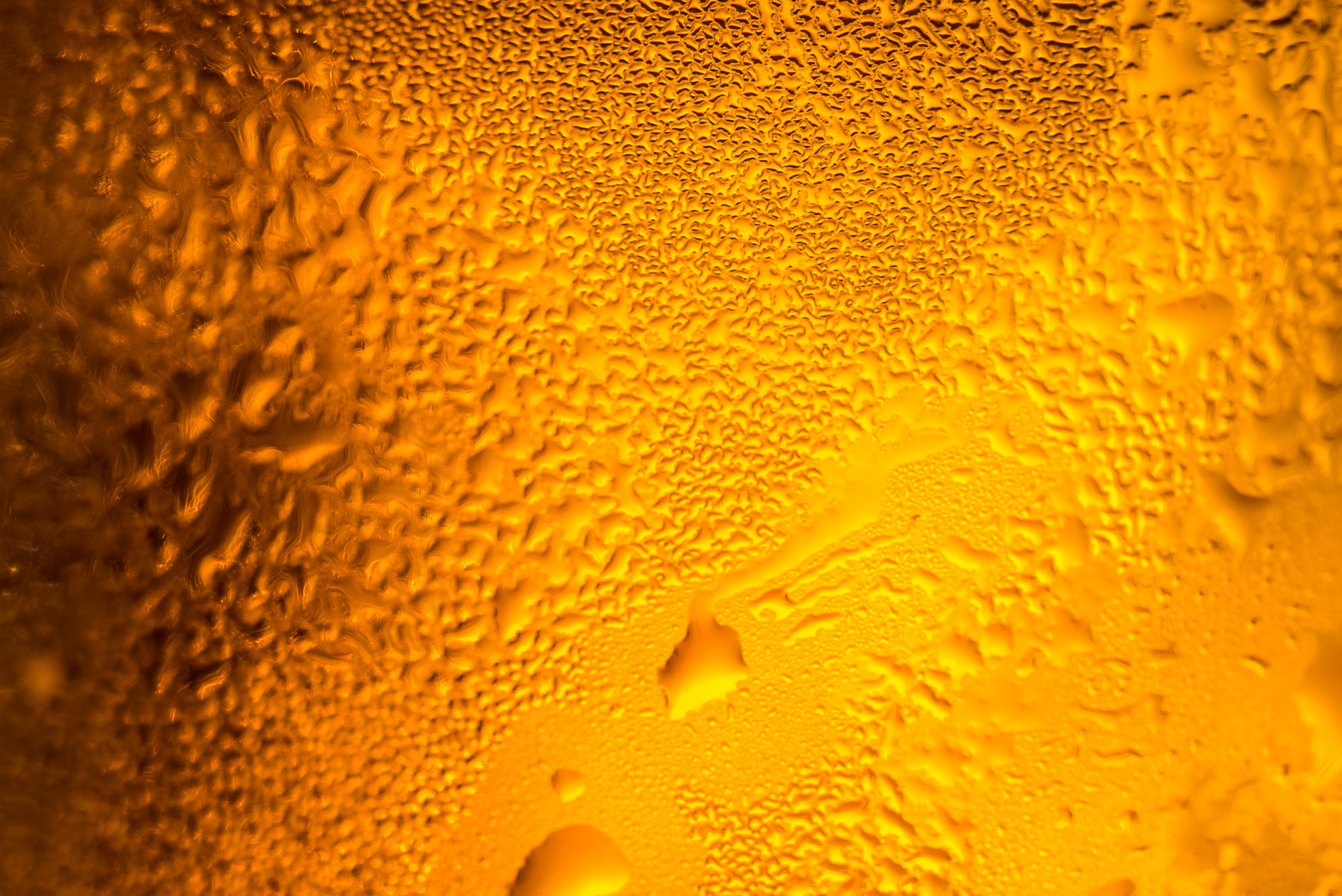picture of a beer in a glass with water drops for download
