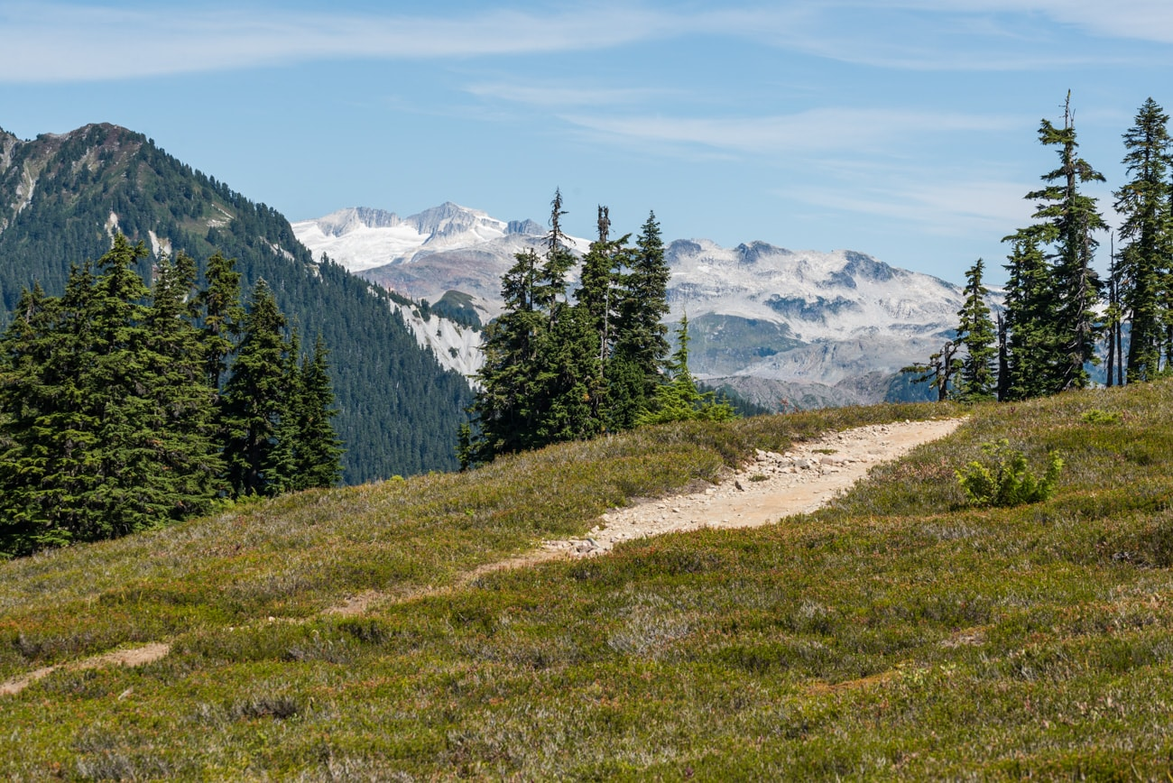 Trail in Garibaldi Provincial Park to Elfin Lakes surrounded by trees and snowy mountains.