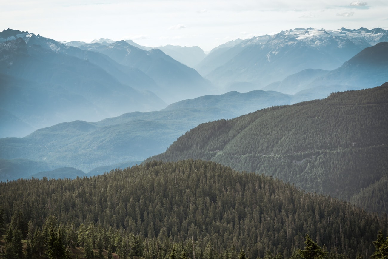 Hills & Valleys covered by trees in British Columbia.