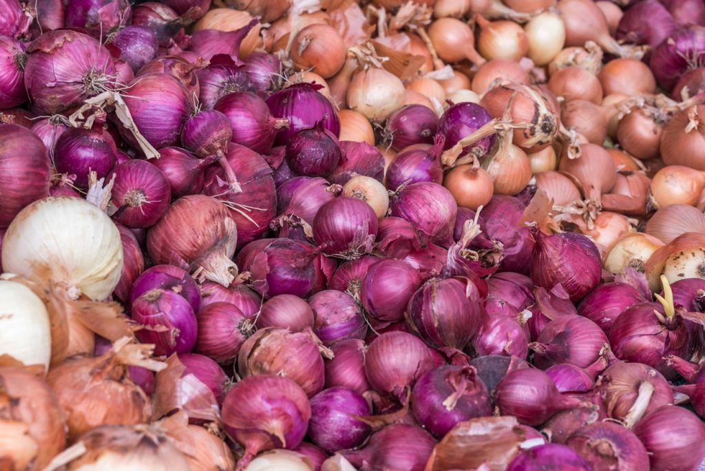 Large Yellow & Red Onions. Free Pictures for Your Blog for an Attribution.