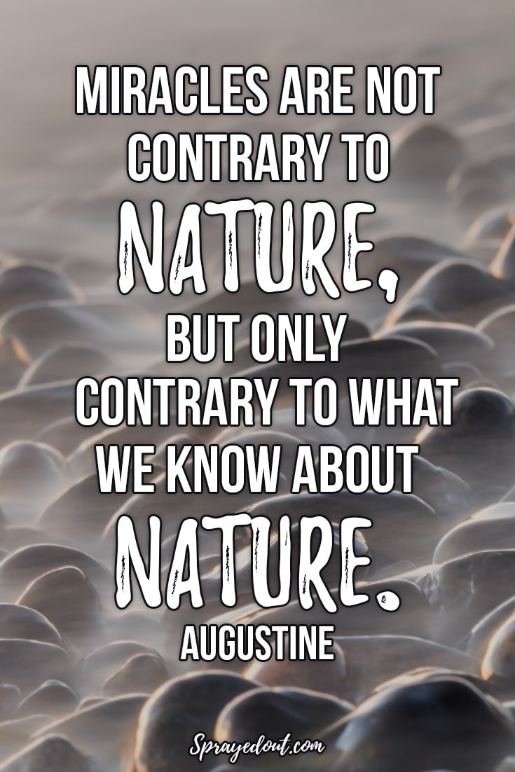 Augustine Quote About Nature.