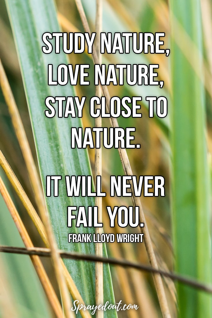 Frank Lloyd Wright Quote About Nature.