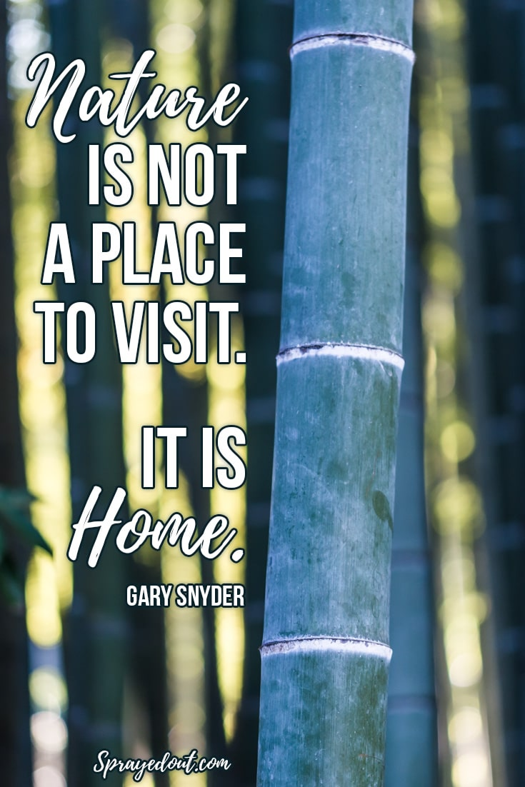Gary Snyder Quote About Nature.