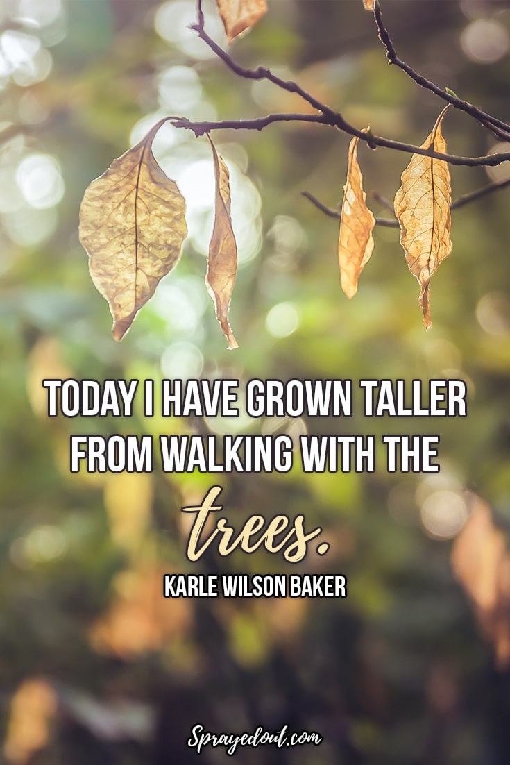 Karle Wilson Baker Quote About Mother Nature.