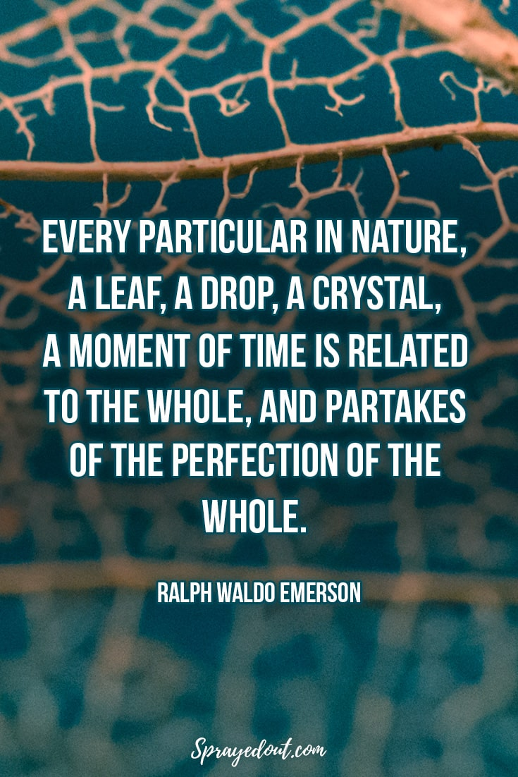 Ralph Waldo Emerson Quote About Mother Nature.