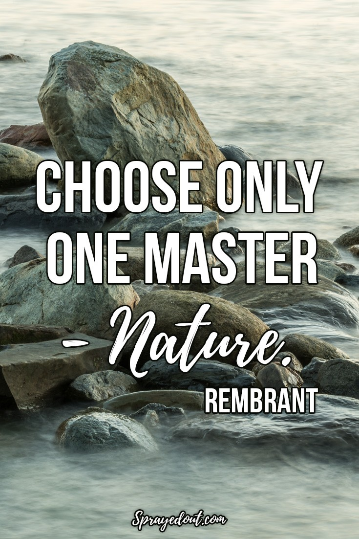Rembrant Quote About Mother Nature.
