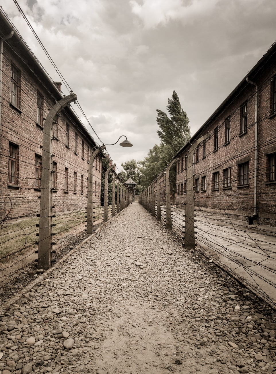 Buildings & Fences in Auschwitz