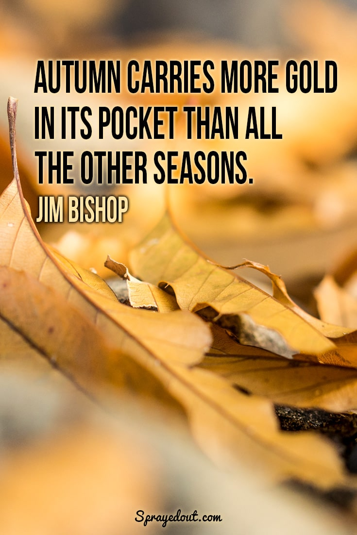 Jim Bishop quote about autumn.
