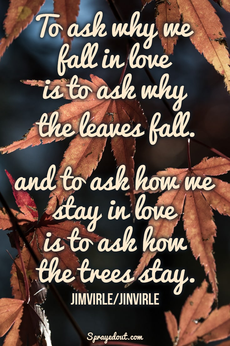 Jimvirle/Jinvirle quote about falling leaves.