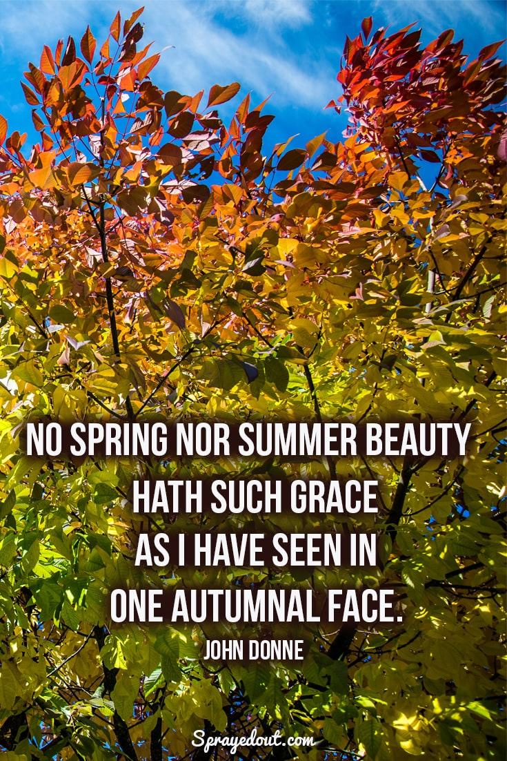 John Donne quote about autumn.