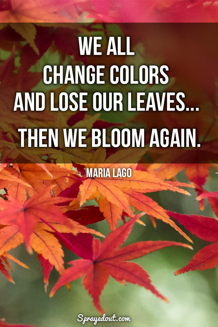 Maria Lago quote on fall leaves.