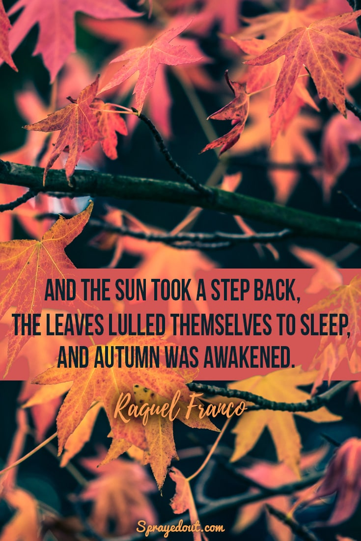 Raquel Franco quote about leaves and autumn.
