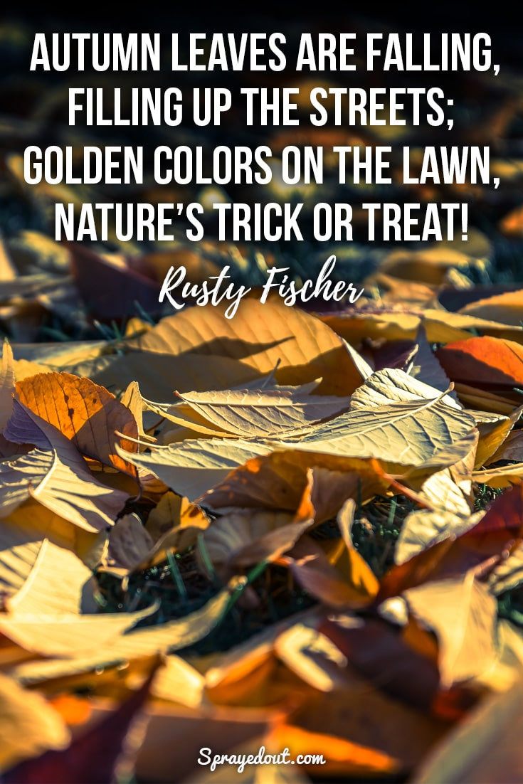 Rusty Fischer quote about autumn leaves.