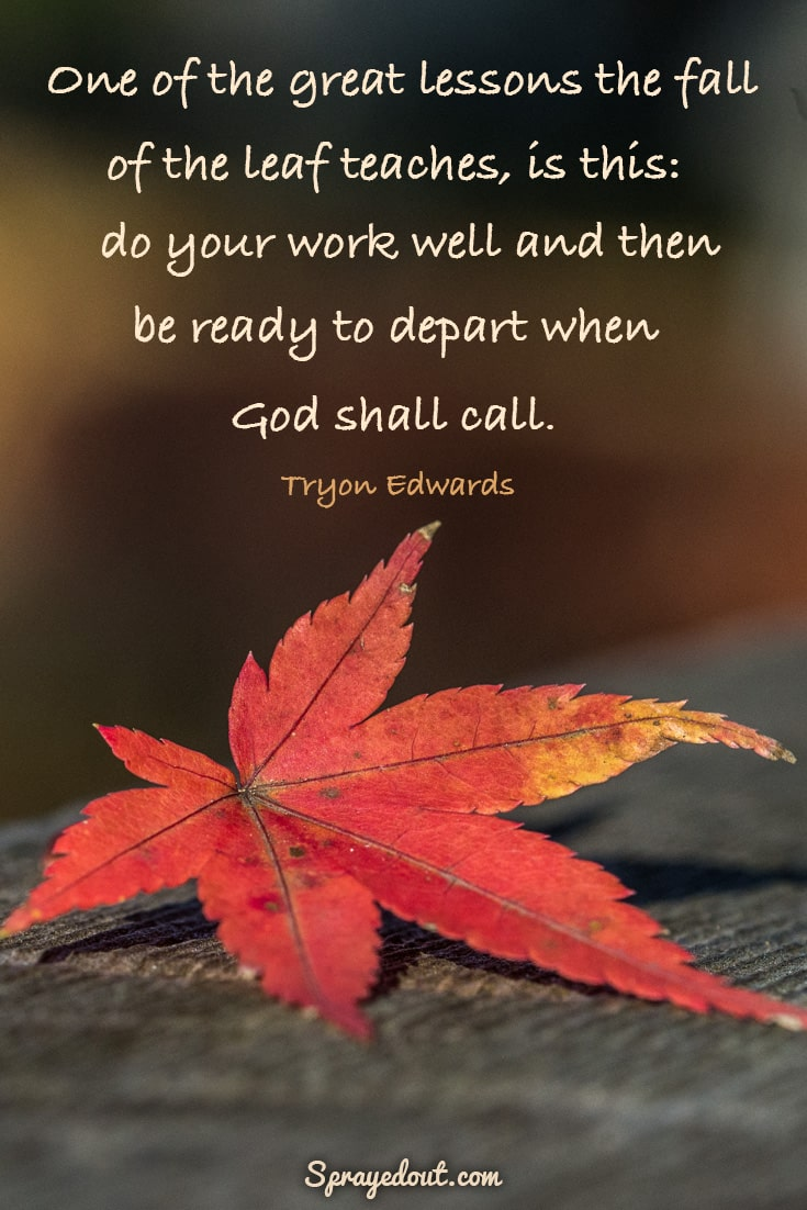 Tryon Edwards quote about autumn leaves.
