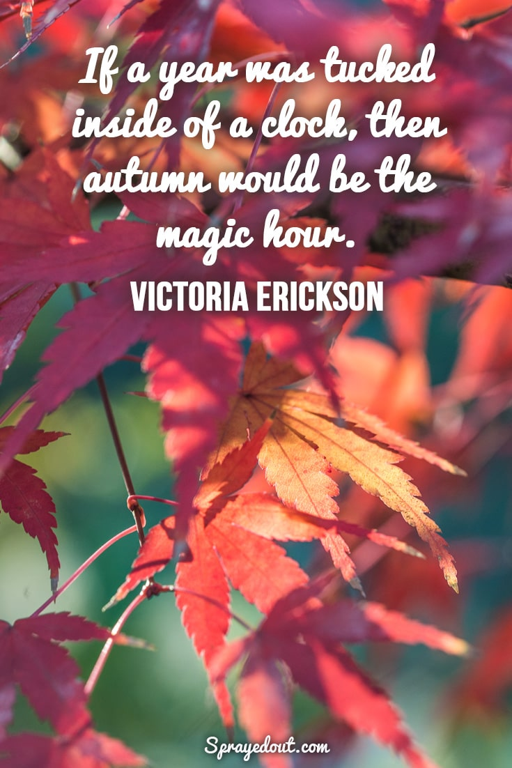 Victoria Erickson quote about the beauty of autumn.