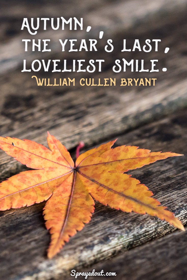 William Cullen Bryant quote about beautiful autumn.