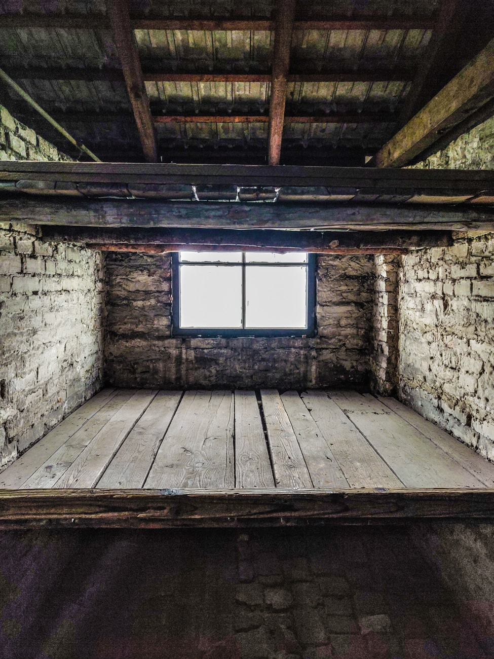 Wooden Bunks in Birkenau Barracks