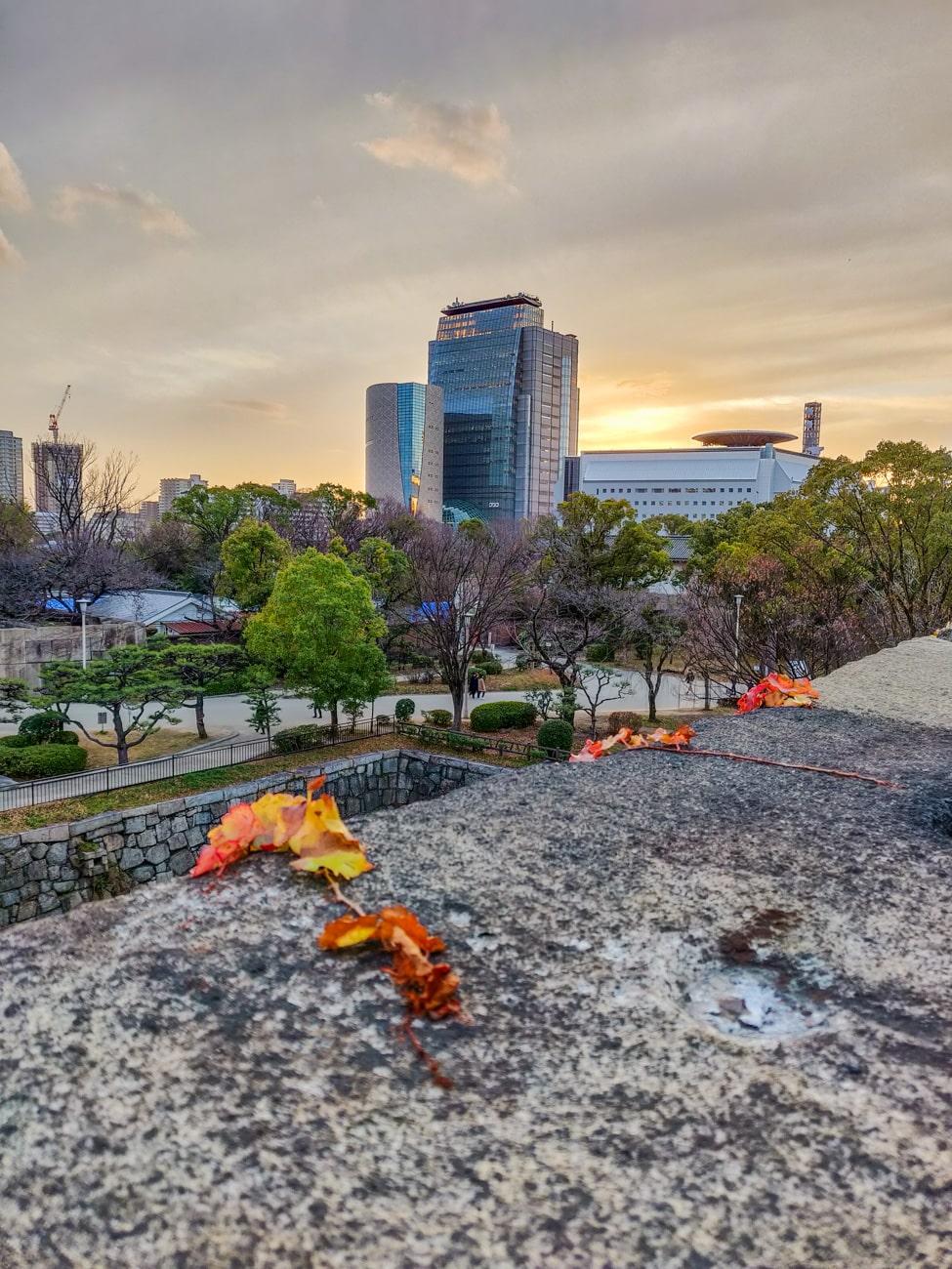 Red/Orange Leaves & Sunset from Osaka Castle Park