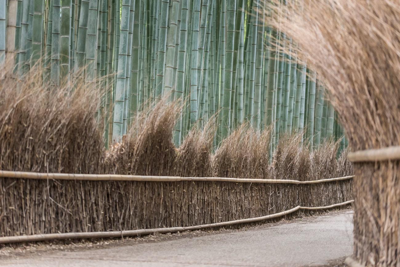 Arashimaya Bamboo Grove alley.