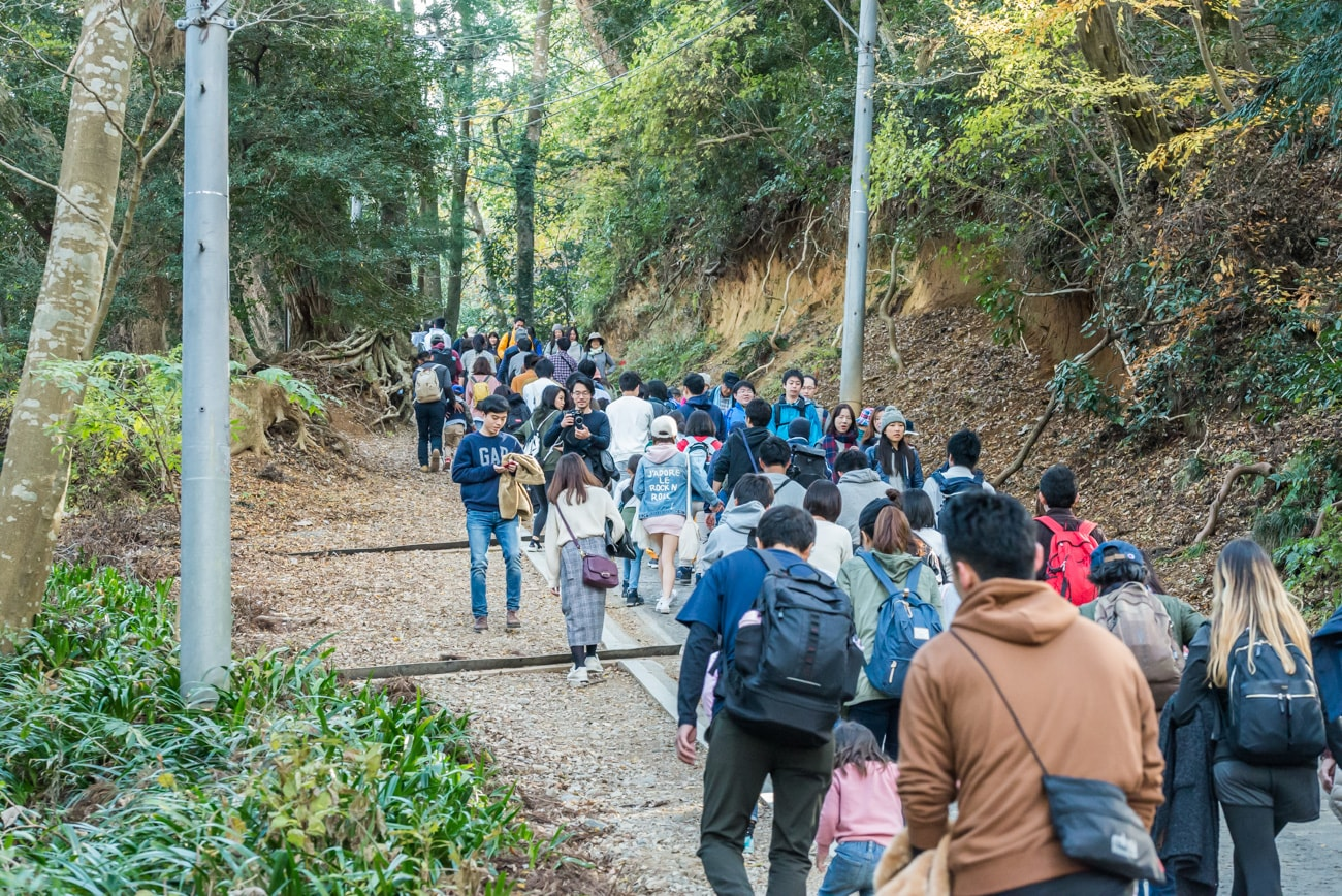 Hikers on the way to Mt. Takao.
