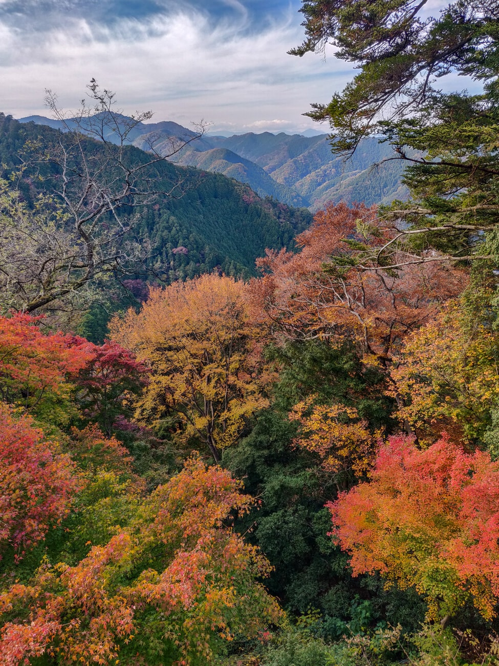 Mt. Takao in Autumn, colorful leaves and trees, mountain landscape.