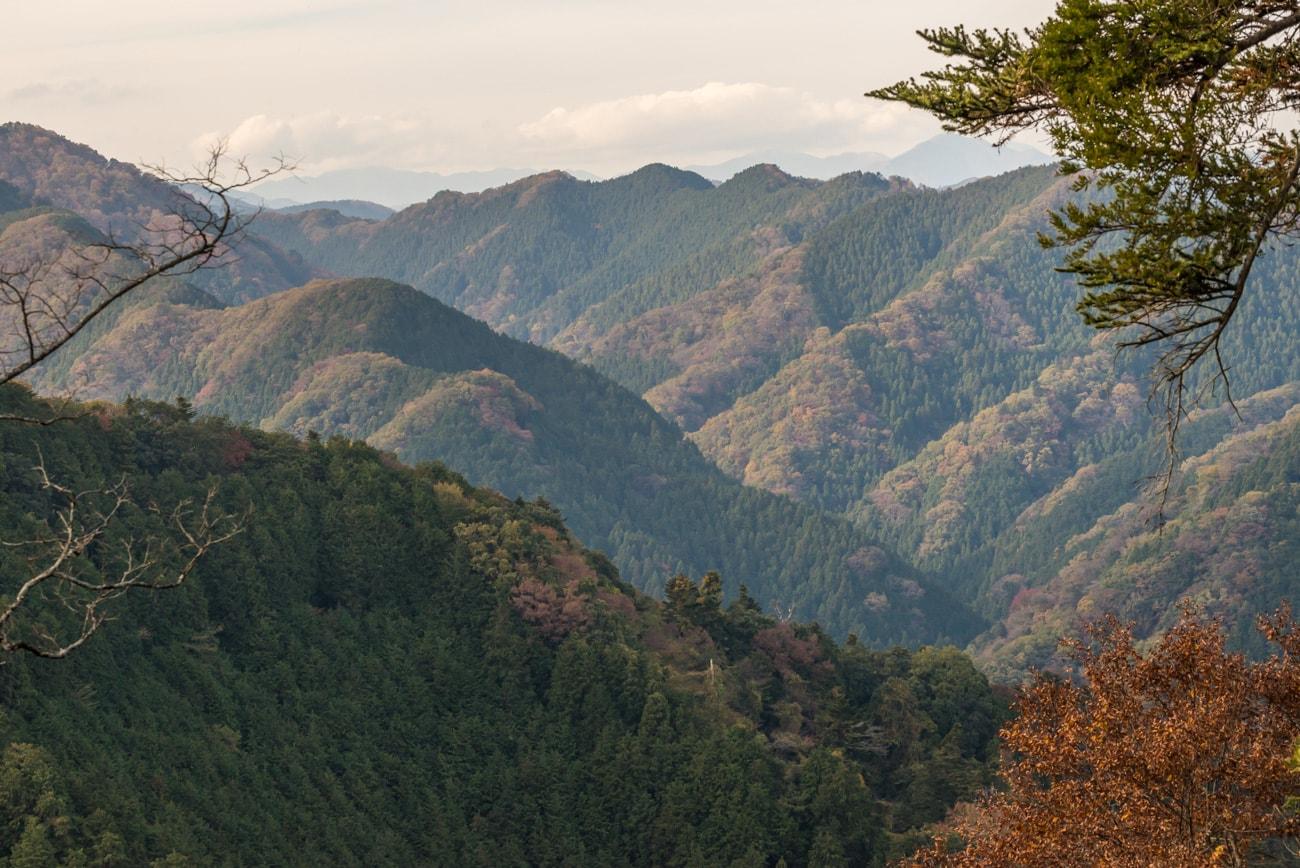 Trees & Mountains Landsca: Mt. Takao, Tokyo, Japan