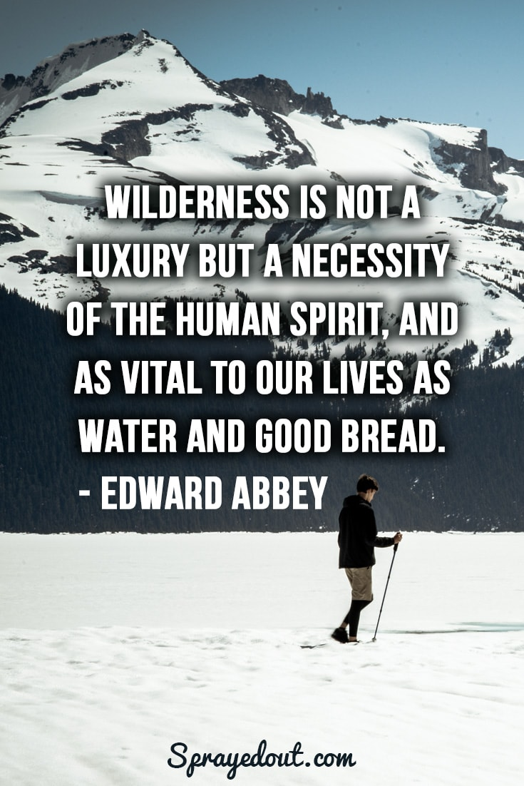 Edward Abbey quote about wilderness.