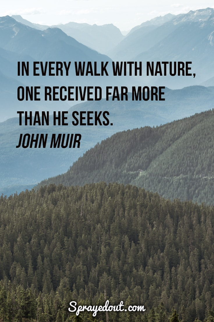 John Muir quote about walking in nature.