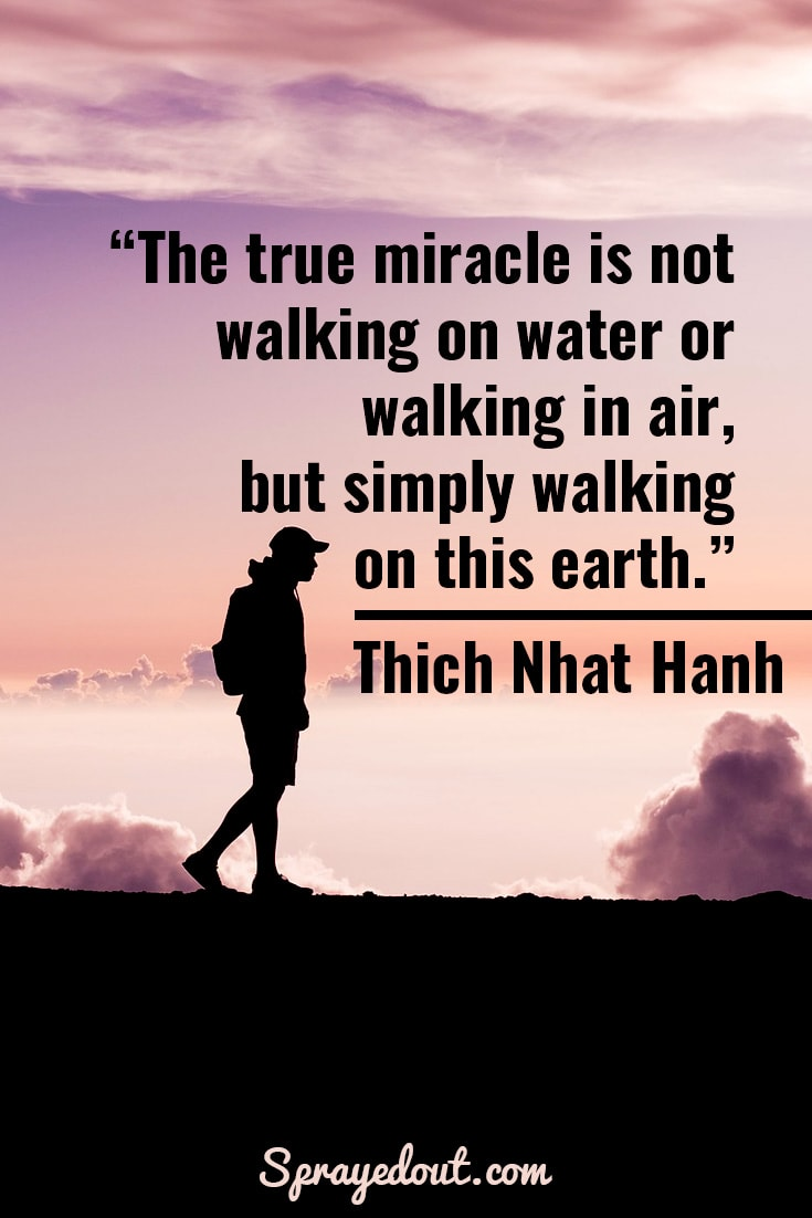 Thich Nhat Hanh quote about miracle of walking.